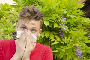 Easy Ways to Get Rid of Allergies That Experts Never Reveal